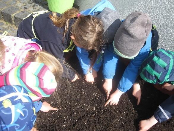 Fotos: Ev. Kindergarten Hand in Hand